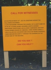 'Witness Board' by Jane Millar