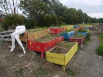 Growing beds with shop dummy