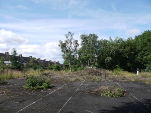 Disused overgrown tennis court