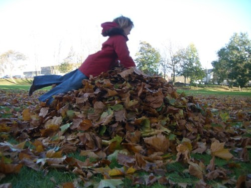 My daughter diving on a leaf pile