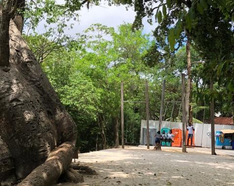 Jardin Baobá, Parque Capibaribe, Recife